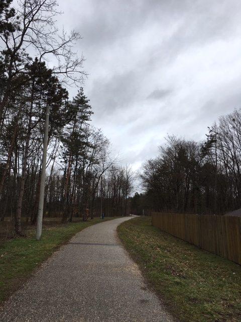Walken, Laufen- FIT IN DEN HERBST :)