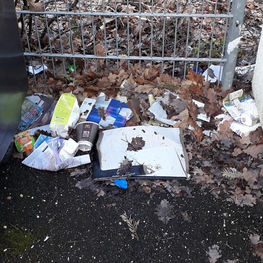 Müllsammelprojekt 2020