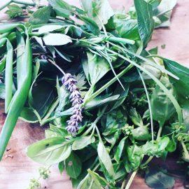 Gartenfreu(n)de! wir pflegen mit den Jugendlichen unseren Garten  für das Erntedankfest im Herbst, da stehen unsere Produkte zum Verkauf :)