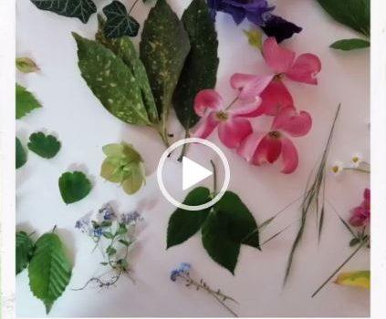 Mach dir deine eigenen Kunstwerke mit Naturmaterialien